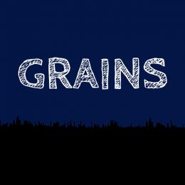 logo-carre-grains-transp-660